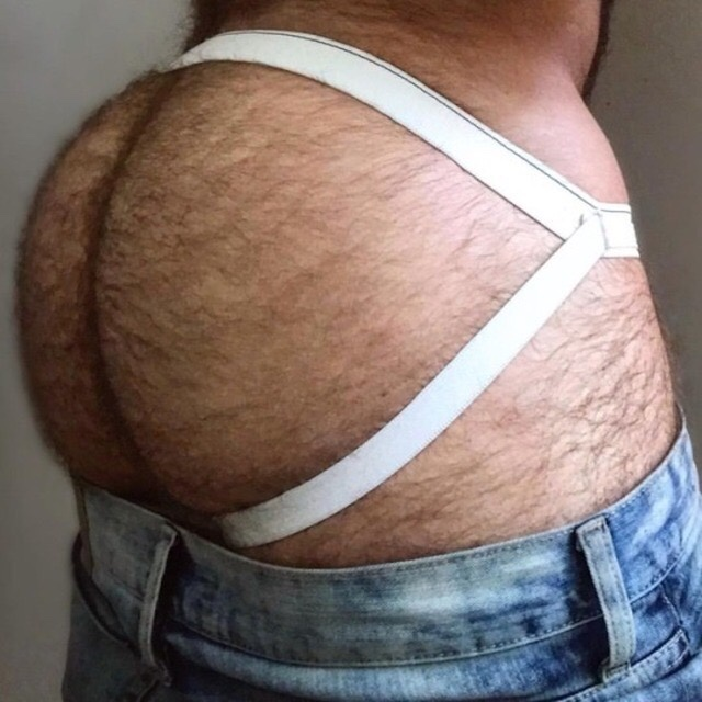 Hairy round asses and white jockstraps literally drive me crazy.